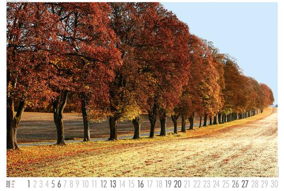 Landschaft_2022-11.jpg