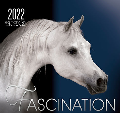 FASCINATION-2022_.jpg