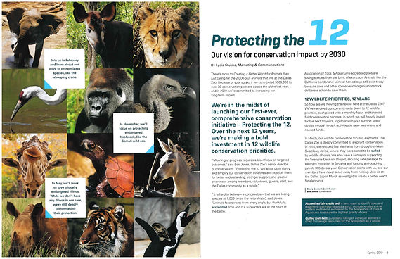 Protecting%20the%2012_edited.jpg