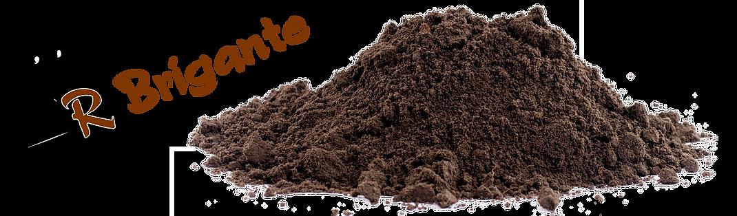 R. Brigante Excavating Logo