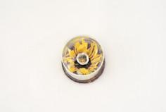 Tiny Spulcher With A Sun / detail