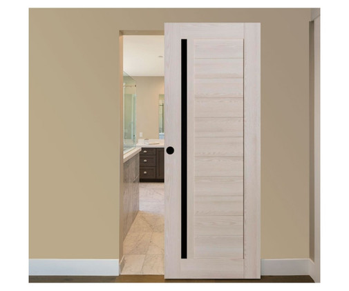 Wall Hung Door