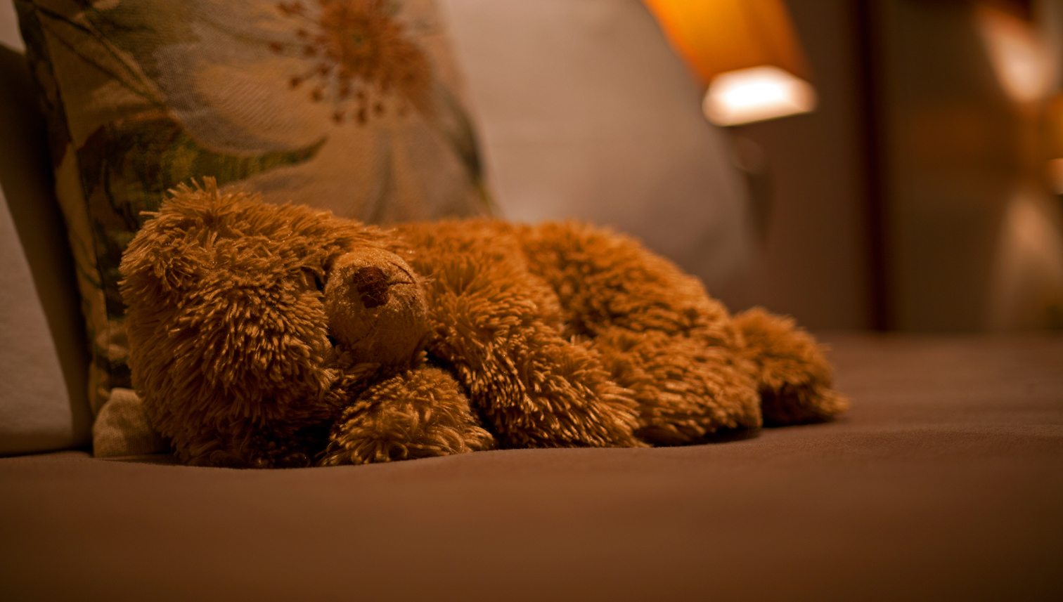 Sleeping Teddy Bear 1