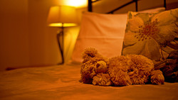 Sleeping Teddy Bear 3