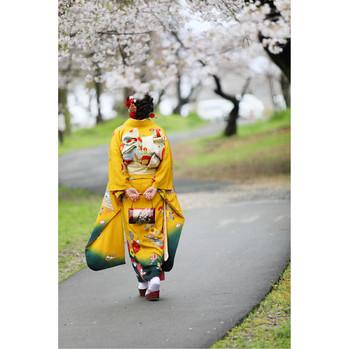 成人式桜ロケーション06.jpg