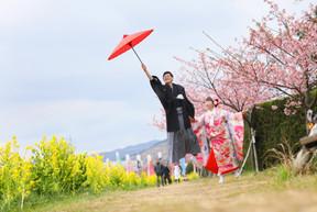 和装桜・菜の花ロケーション撮影