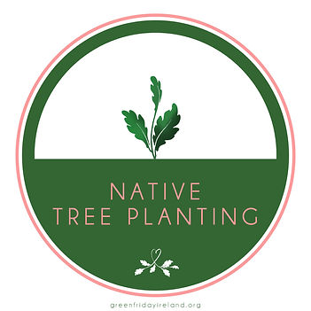 Events_ tree planting.jpg