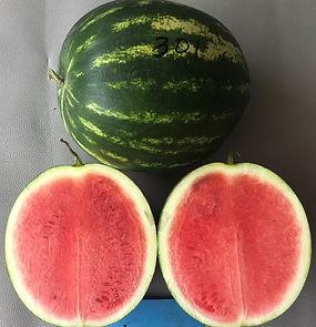 AW0026 Fruit 2.jpg