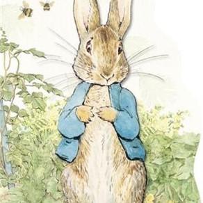 Pedro, o coelho mais levado do mundo!
