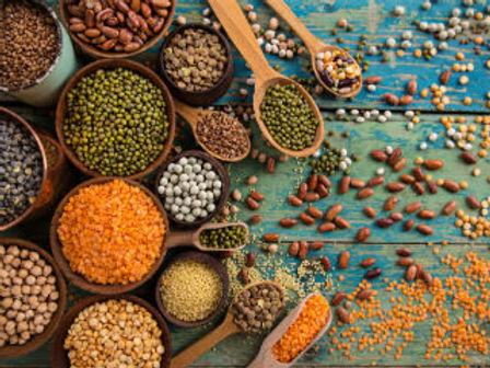 Legumes-in-line.jpg