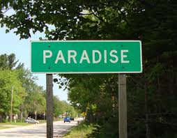 The Weekend Guide to Paradise!