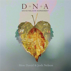 MON DAVID & JOSH NELSON, DNA (David/Nelson/Agreement)