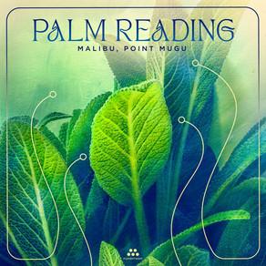 PALM READING, Malibu: Point Mugu