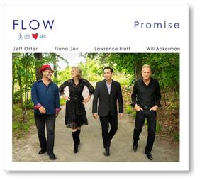 FLOW, Promise
