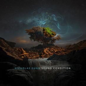 NICHOLAS GUNN, Sound Condition