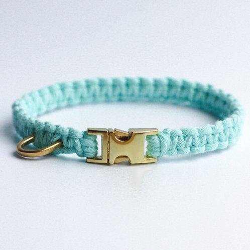 Bahamas Blue Puppy Collar