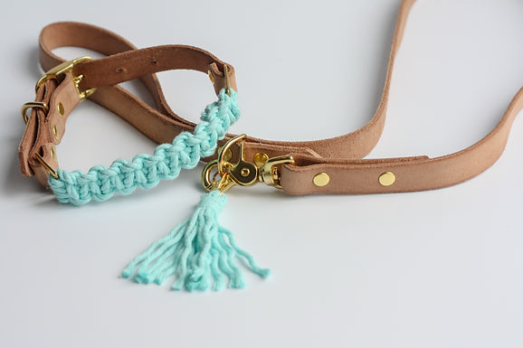 Mint Blue Leash & Collar Set