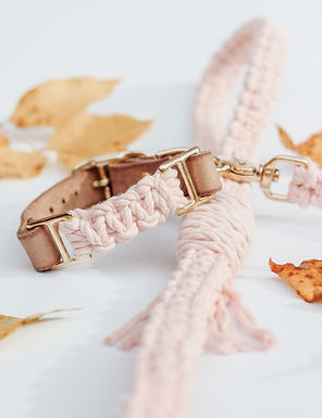 Soft Pink Adjustable Collar