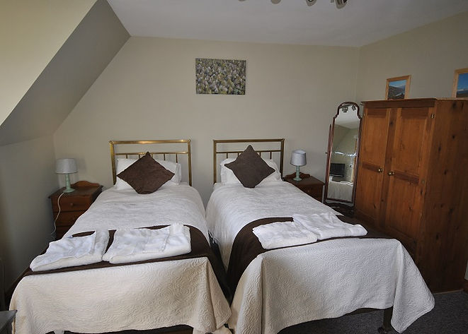 Bed and Breakfast Twin Room Dixton