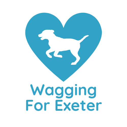 Wagging For Exeter Dog Walking