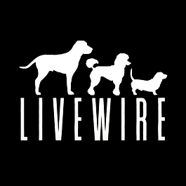 LiveWire v2.1.png