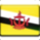 Brunei-Flag.png