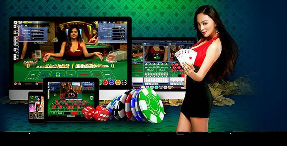 online gambling club , touchwin , sexy girl casino , free bonus