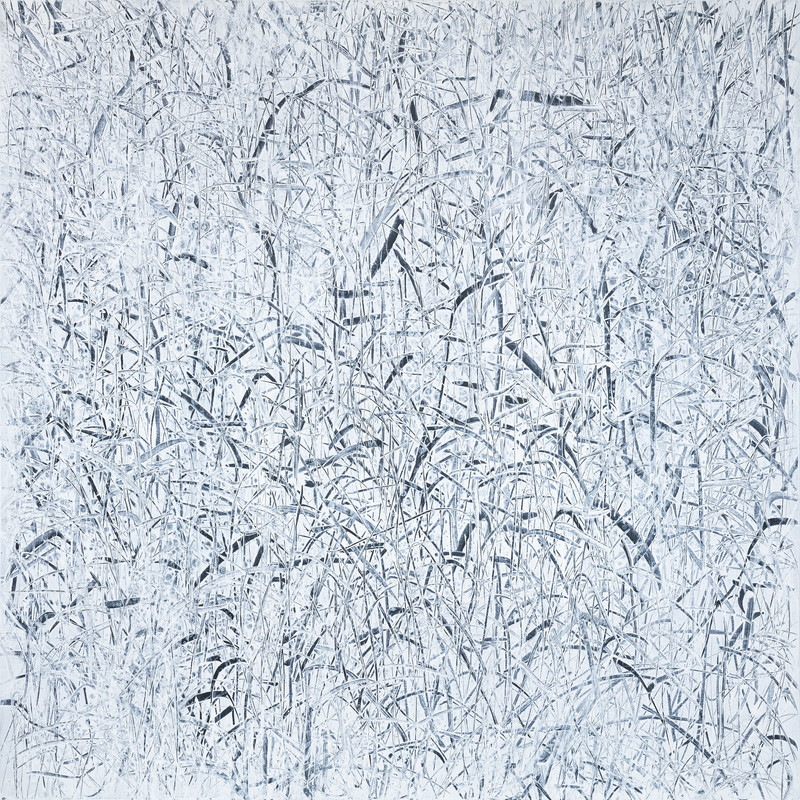 The Memory of Nature (21-32) Canvas on Acylic 130x130cm 2021