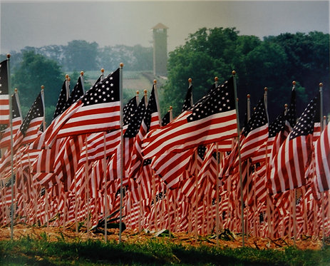 Battlefield with US flags photo