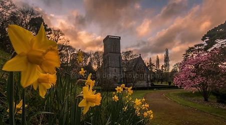 Bicton Church