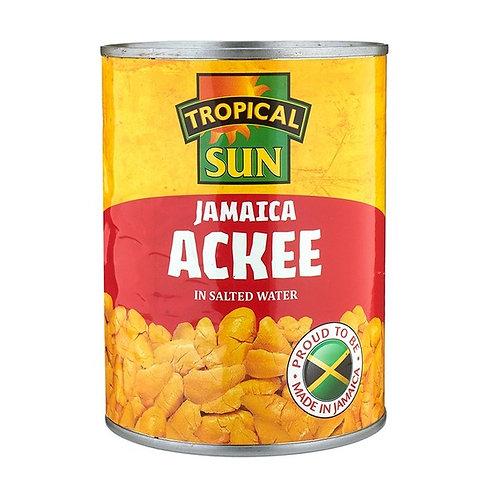 ACKEE 540G