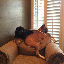 Roxey & Jazzy