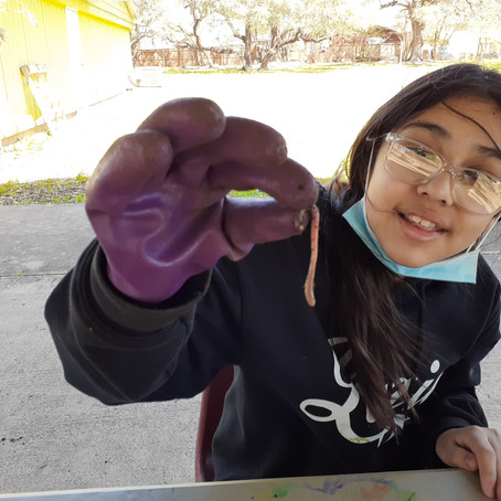 Students Learn with Gardening Fun! during Spring Break