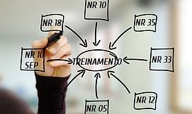 trinamentos normas regulamntadoras|uberandia|minas gerais
