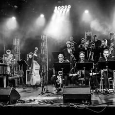 humans palace orchestra 1