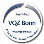 VQZ Logo.jpg
