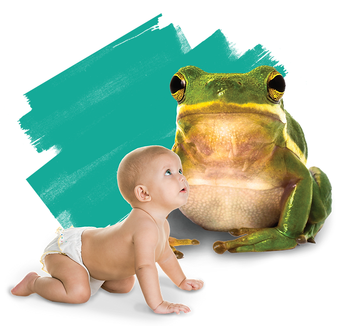 BABY show and tell.png