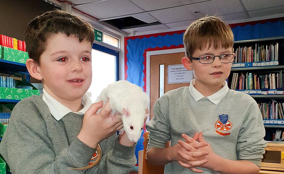 BOYS RAT 2.jpg
