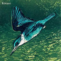 Kōtare_4.jpg
