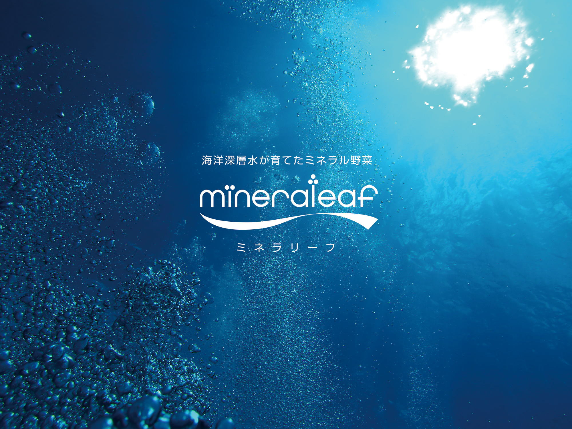 mineraleaf_logo_mini