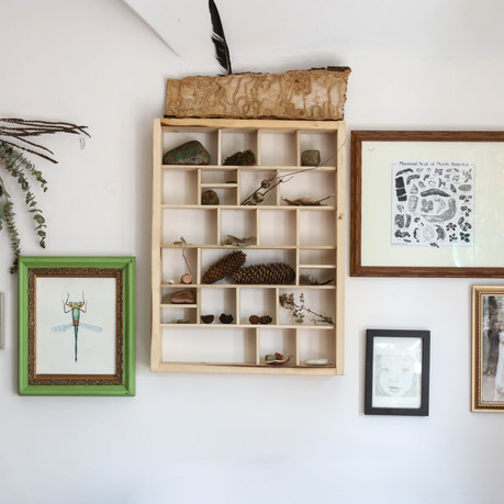 Home decor on the nature lover's budget
