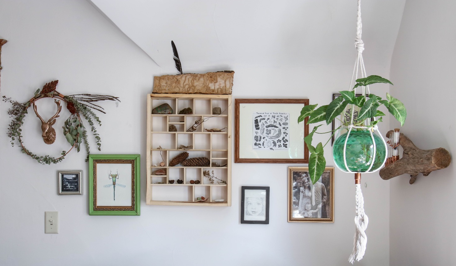 Gallery Wall with Nature Shelf