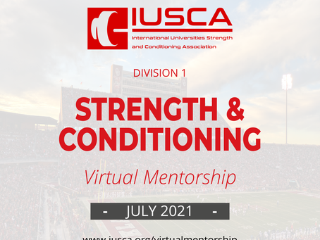 IUSCA Virtual Mentorship