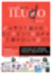 2018_cartell-Iludo online.jpg