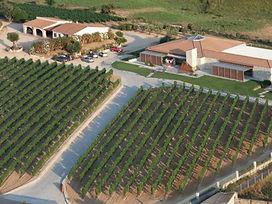 Tour del vino di granito