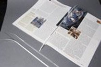 """Double Sided 6.5"""" Security Strips (price for 1,000)"""