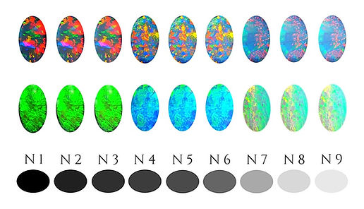 Hopkins Opal | Opal Body Tone Guide | Opal Education