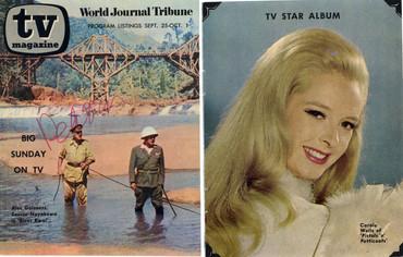 TV Magazine TV Star Album 1966