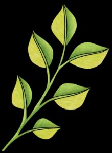 khadfield_SpringitySpringEU_leaves_2x.png