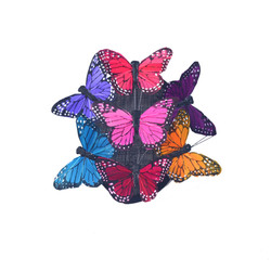 Mixed Color Rainbow Monarch Butterfly Teardrop Fascinator Hatinator by Fab Hatters